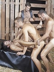 Thom Barron::Chris Rock::Lorenzo Donado::Ross Vincent in Gay XXX Pictures