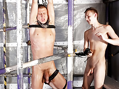 Ramrod Sucking Edging Session - Josh Jared And Reece Bentley