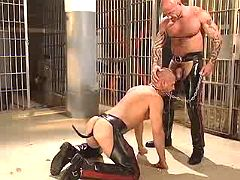Freaky homosexual slave gullets depraved master on knees