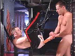 Gay fellow getting hard arse massage with huge phallus exchanger