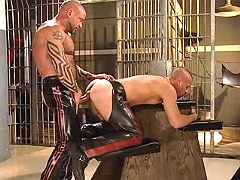Fetish sub doggy getting pumped rough from behind