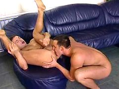 Well hung studs have fiery assfuck on leather couch
