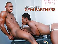 Gym Allies