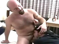 Horny ready stud sucks bear gay