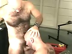 Mature gay sucks cock and licks curly fissure