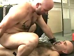 Mature gay jazzes in doggy style and rides cock