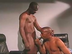 Black faggot doxy serving passionate hunk