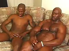 Tight ebon a-hole obtains plugged raw