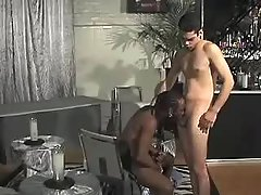 Black stallion pounds sexually aroused homosexual bitch