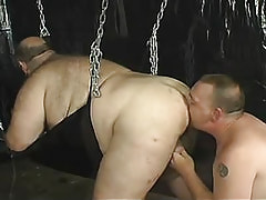 Mature homosexual licks fat fellows anus