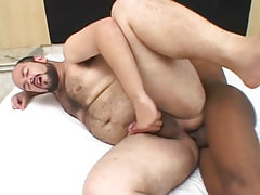 Chubby bushy male fucked by ebony man-lover