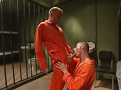 Young prisoner sucks severe cock