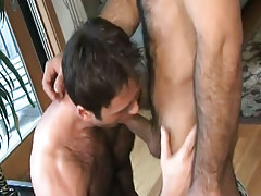 Hairy homo sucks appetizing penis