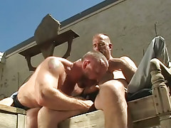Hairy faggot sucks cock of old stud