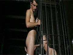 Bad homo in cage sucks hard dick