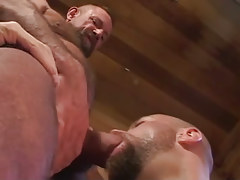 Old curly twink sucked by bear boy