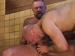 Bear dilf swallows heavy snake of calm gay