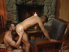 Bear gay licks appetizing wazoo by fireplace