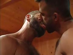 Bear man-lover kiss each other