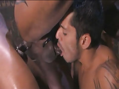 Arabian gay sucked and purchases black schlong in inflexible ass