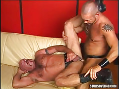 Hairy dilf fucks old bear faggot on sofa