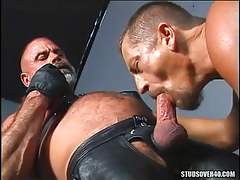 Mature gay sucks old hirsute friend in leather