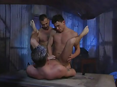 Nasty homosexual guys fuck poor stallion by curves