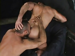 Muscle gay licked by bushy dilf