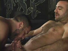 Bear homosexual sucks his melodious boy-friend