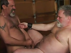 Mature hairy gay cums on old large guy