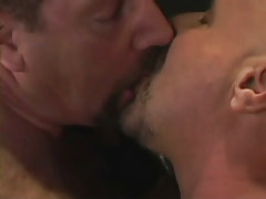 Hairy homosexual men kiss per other