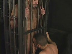 Hairy full-grown man-lover sucked in cage