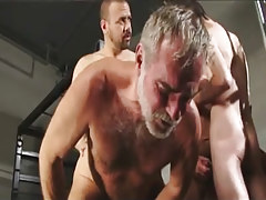 Hirsute homosexual champs fuck silver educator in group sex
